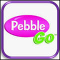 a photo of pebble go