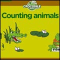 photo of crocodile counting